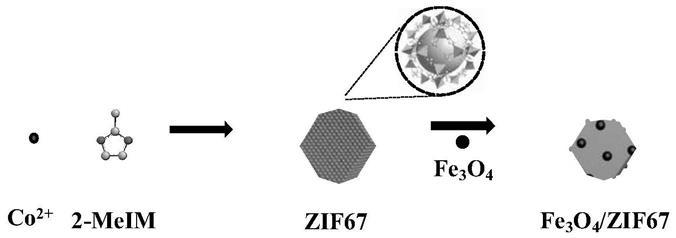 沸石咪唑酯骨架ZIF67四氧化三铁微米马达的制备及其应用的金沙现金网平台
